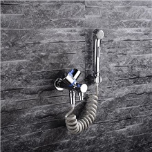 Single hole Bidet ChromeToilet Handheld bidet Sprayer Self-Cleaning Contemporary Other Countries