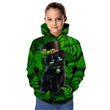 Kids Girls' Active Cat Graphic 3D Animal Print Long Sleeve Hoodie & Sweatshirt Green Green,2-3 Years(100cm)